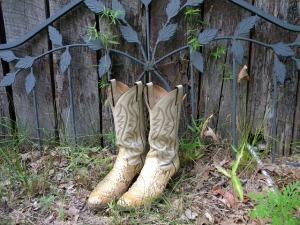 cowboy-boots-177193_640