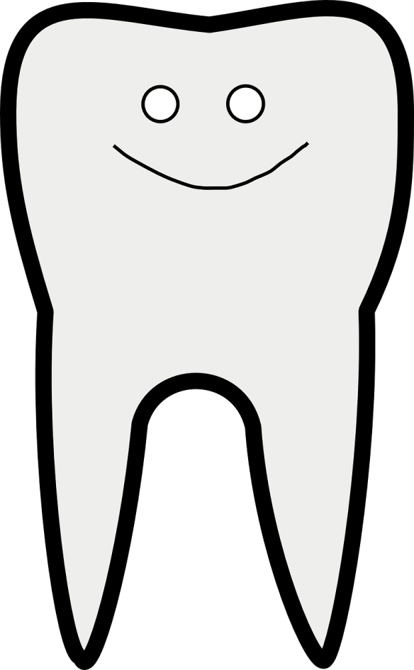 tooth-303171_1280